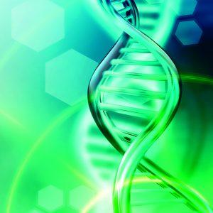 Pantrofina® SKIN DNA